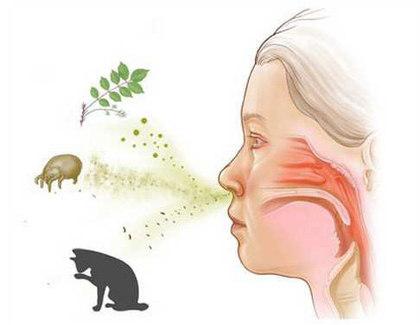 Как я самостоятельно вылечила аллергию