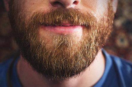 Борода полезна для здоровья!