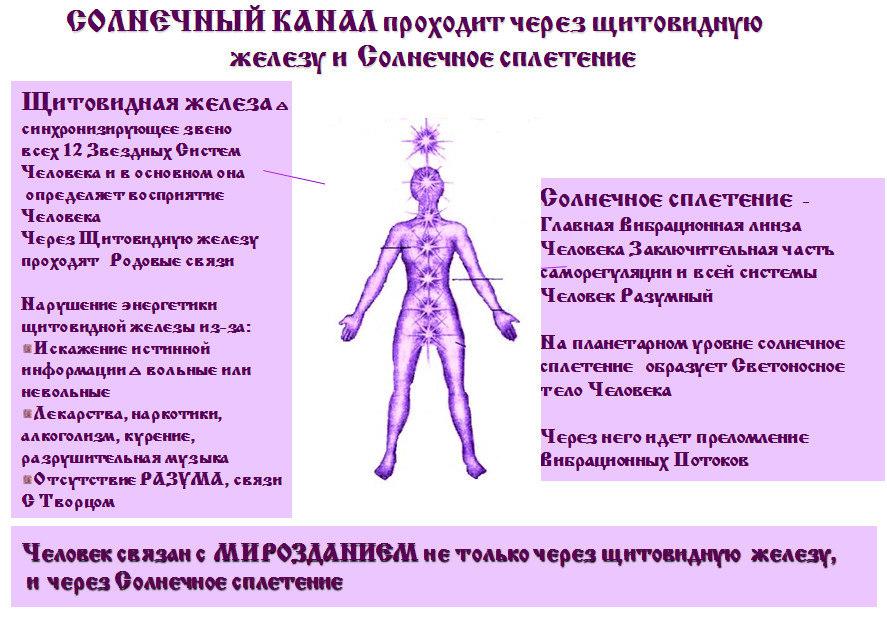 Где находится душа в теле человека