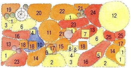 Цветущая клубма круглый год: советы бывалых