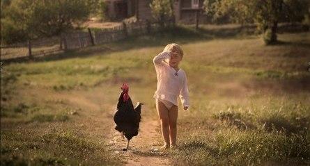 Почему стоит покинуть город и переехать в деревню?