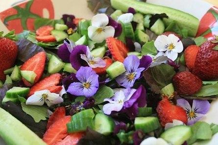 Съедобные цветы к столу