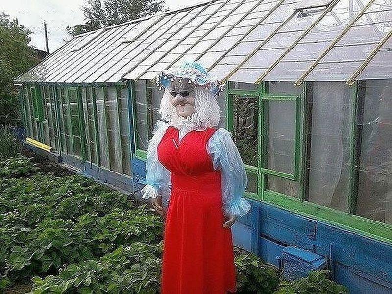 Чучело на огороде своими руками фото