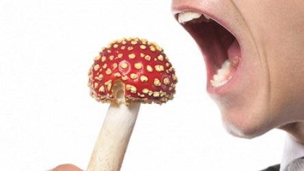 Пищевое отравление: какие симптомы, как избежать?