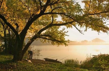Осенний клёв: все на рыбалку!