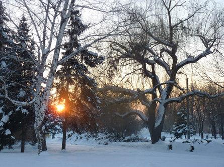 Питание в холодную пору - каким оно должно быть?