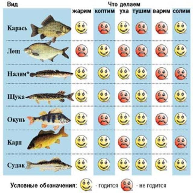 Какая рыба самая диетическая