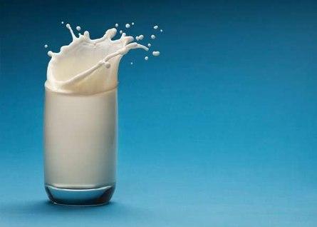 Действительно ли козье молоко полезнее коровьего?