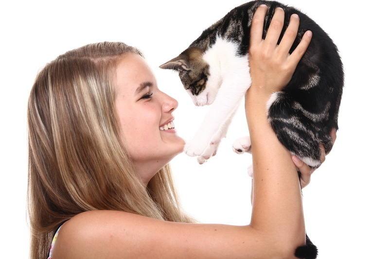 любителей сайт кошек знакомств