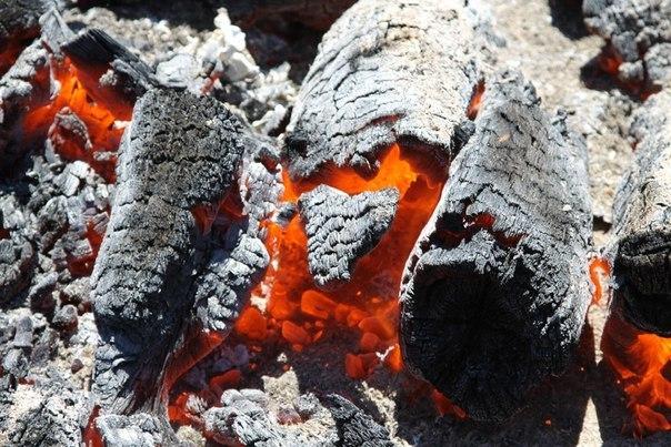 Лечение печной золой и древесным углём