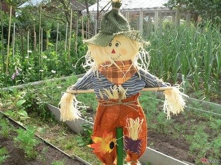 Как смастерить по-настоящему эффективное огородное пугало?