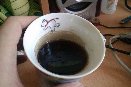 Чай с плёнкой: выпить или выжить?